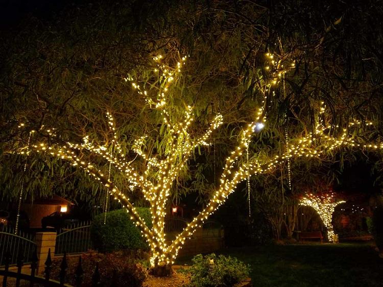 милая новогоднее дерево с гирляндой картинки оставьте